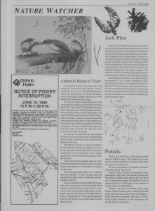 The Laker Issue 5 From Friday, June 17, 1988.