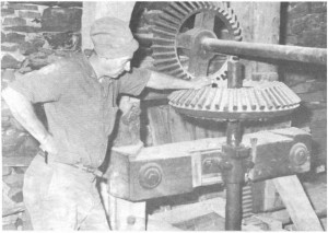 This story and linked photos is about the Mill in Old Killaloe. Shown is one time owner Ben Johnston. Betty Mullin Collection.