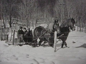 group of people on a horse drawn sleigh ride unidentified