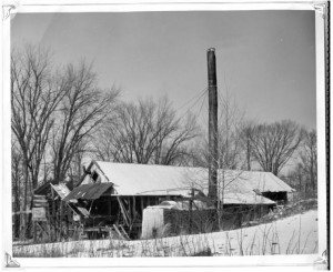 Photo of Schutt's Mill along Brennan's creek. Pearl Murack Collection.