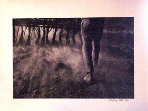 unidentified photo of fog and legs